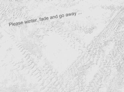 winterfade1.jpg